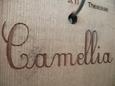 bois-camellia