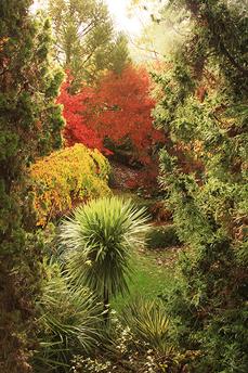 Plantarium_Oct_10