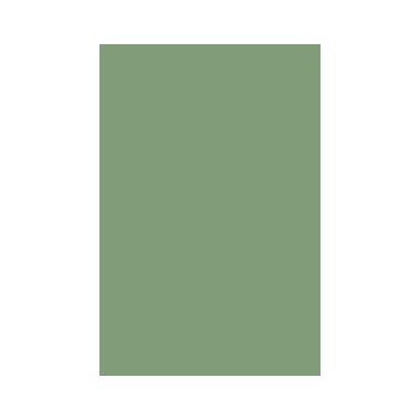 couleur-81