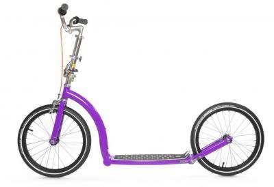 swifty-purple-1340740044