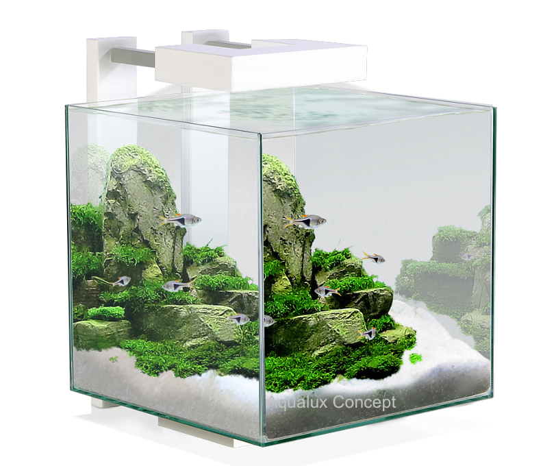 Aquarios-Ciano-Decor-Nexus-Pure-15-Destaque-Interior