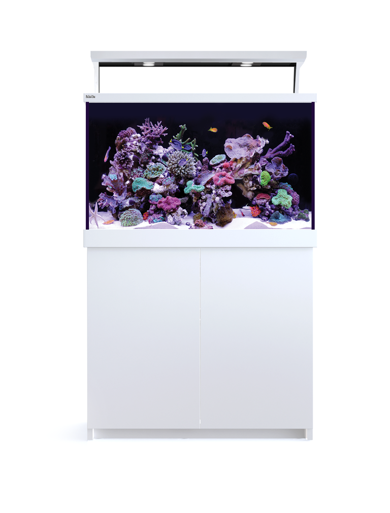 max-s400-led-blanc_bg
