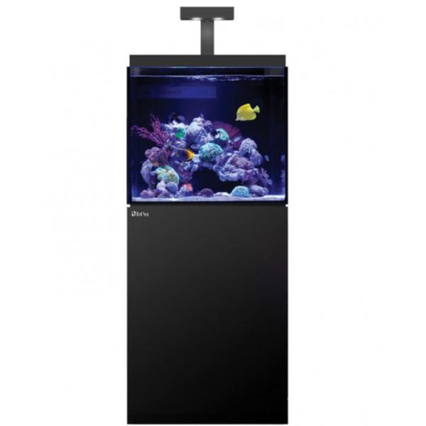 Max e 170 led 1 hydra 26 avec wifi noir aquariums for Poisson acoiriome