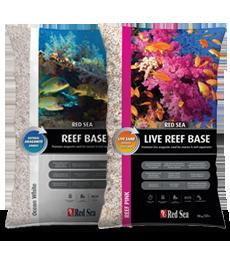 live reef base