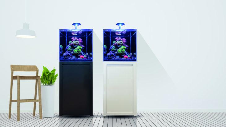blue-marine-aquarium-125-730x411