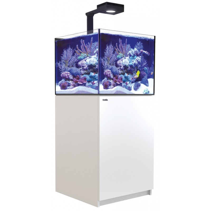 red-sea-reefer-deluxe-xl-200-blanc