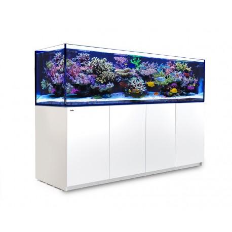 red-sea-reefer-3xl-900-blanc