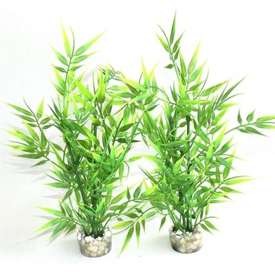 Bamboo pick 25CM