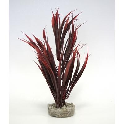 Sword plant 25CM