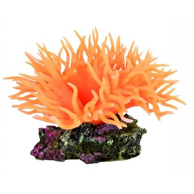 Anemone orange Orange 8CM