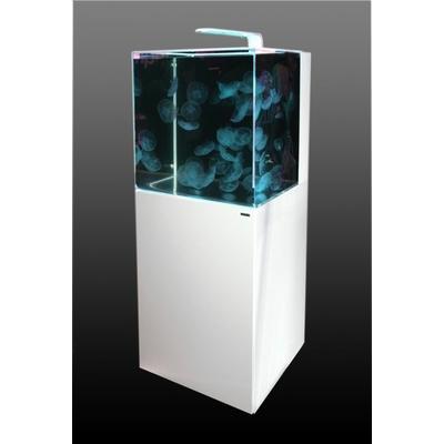 Aurelia 220 Jellyfish Aquarium (white)