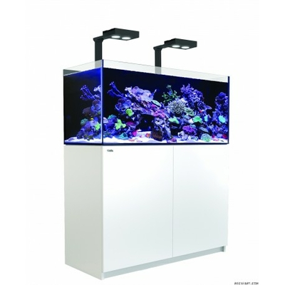 Reefer Deluxe 350 Blanc
