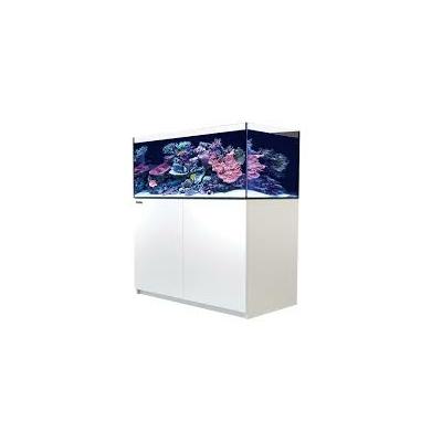 Reefer XL 425 Blanc