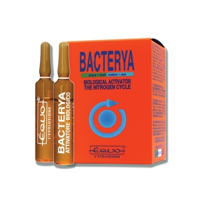 BACTERYA 5ML 6 AMPOULES EQUO
