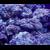 Capture d'écran 2017-12-08 à 00.28.14
