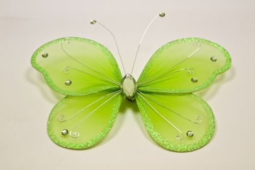 Grand papillon vert anis