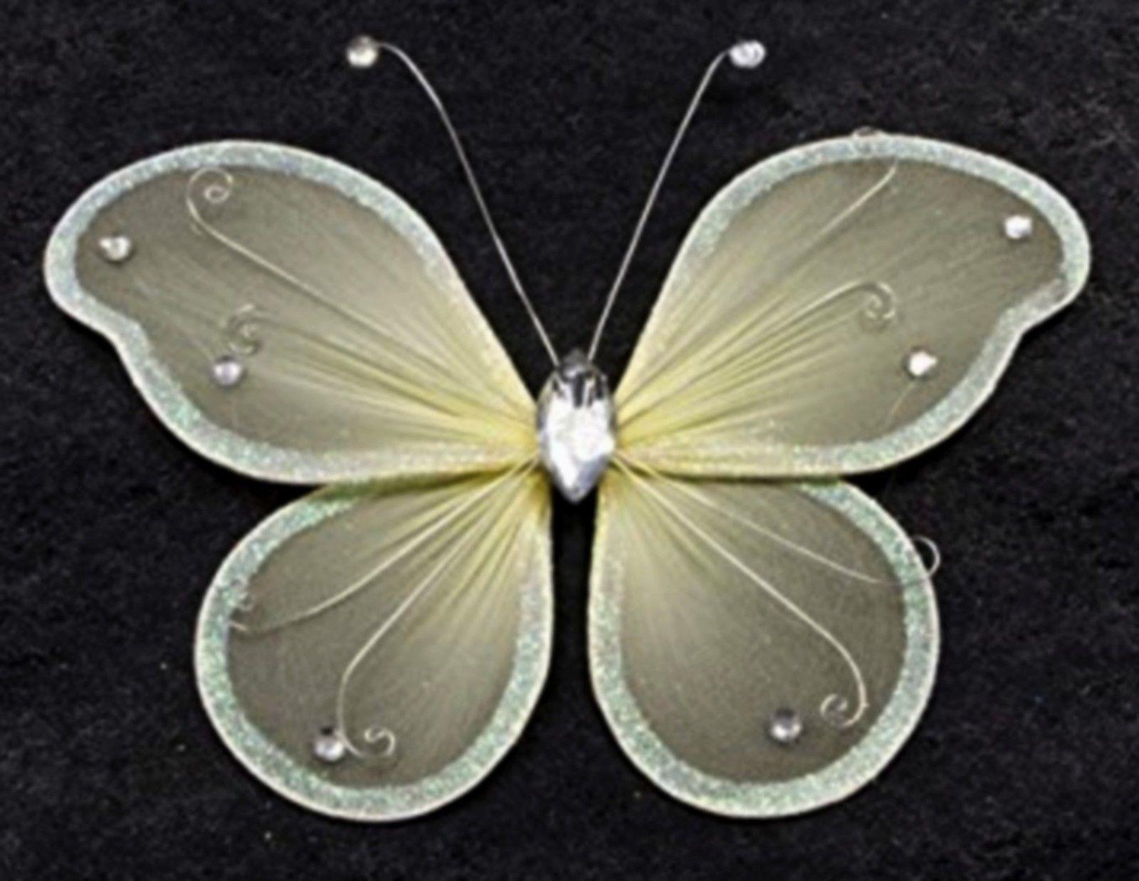 Grand papillon ivoire