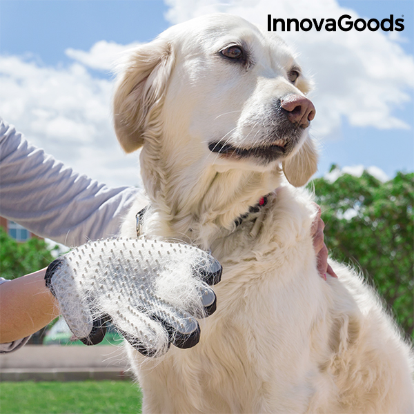 Gant pour Brosser et Masser les Animaux Domestiques InnovaGoods