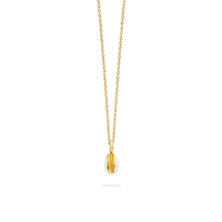 Collier Cauris Ivoire Or