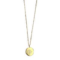 Collier Médaille Cristaux Centre Or