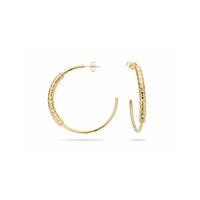 Boucles d'Oreilles Charlize Gold