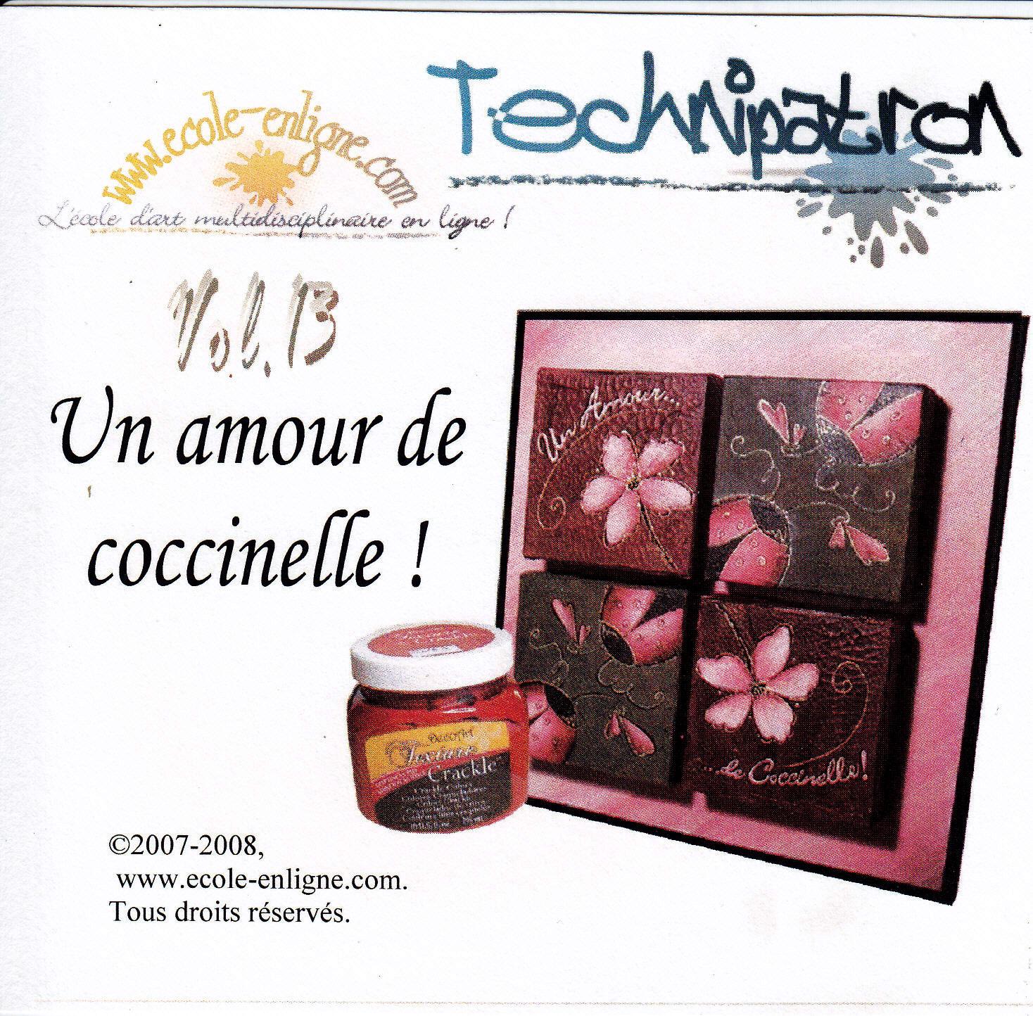 Un amour de coccinelle - Technipatron Vol 13