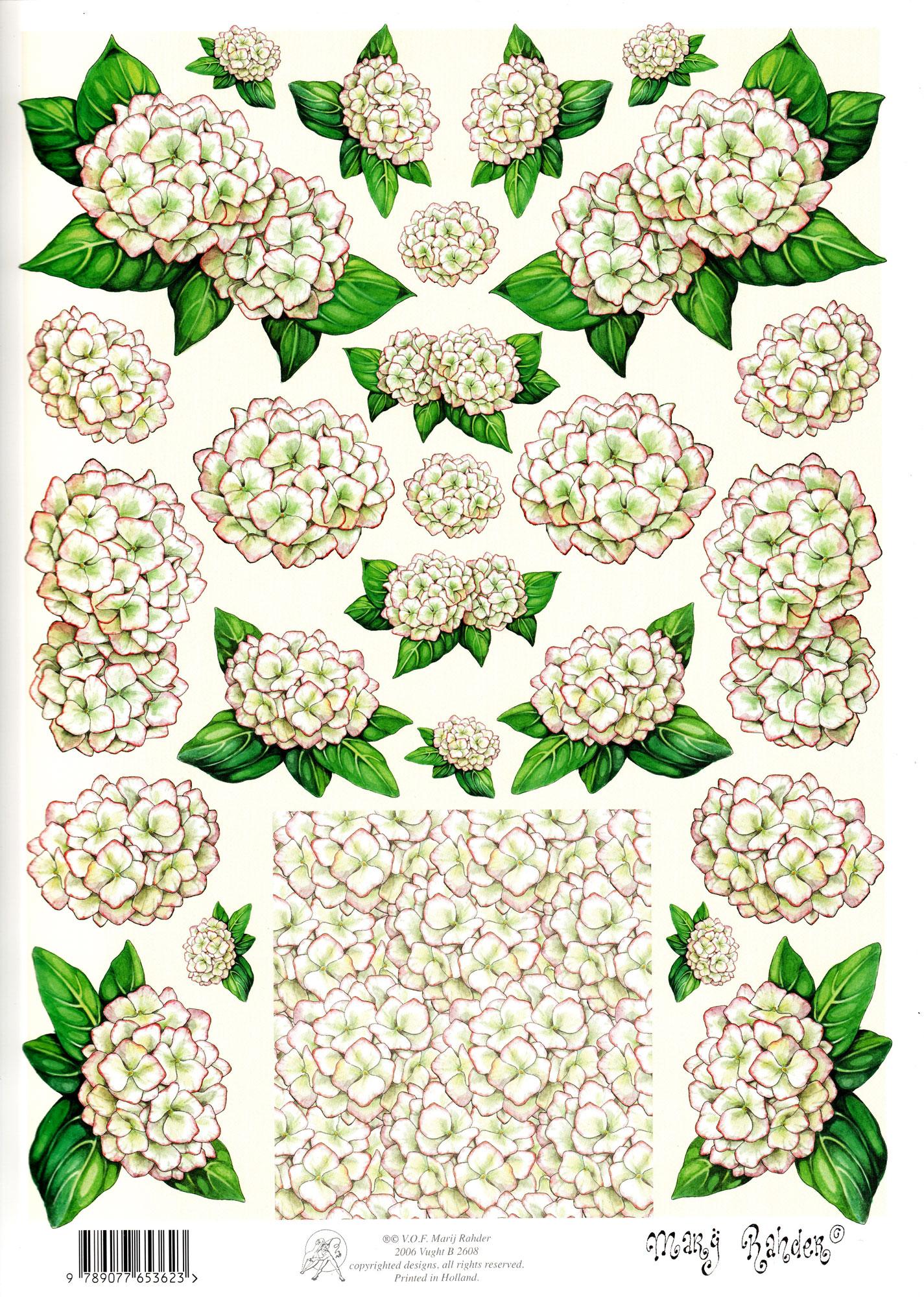 planche d\'images pour cartes 3D - A4 - Les hortensias