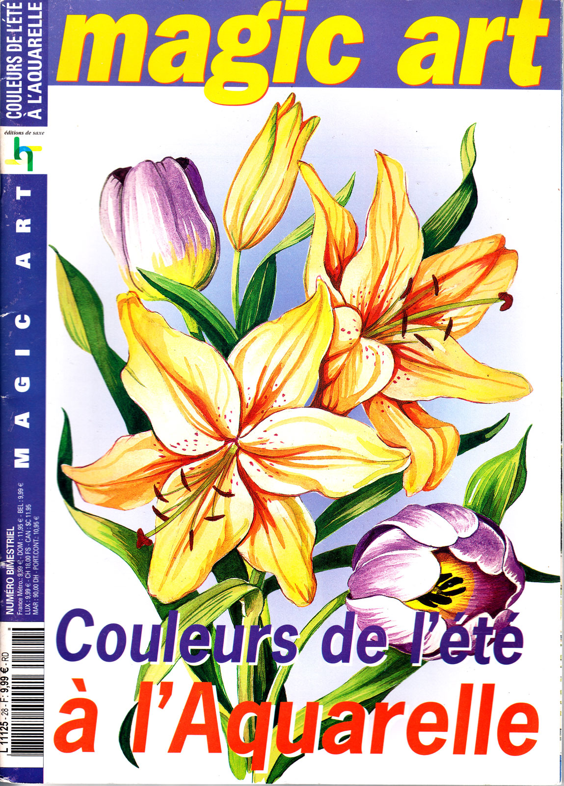Couleurs de l\'été à l\'aquarelle - Magic art - N°28