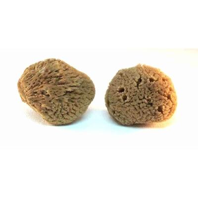 2 éponges naturelles non blanchies - Manet