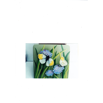 Butterfly & scabiosa - K Hubbard
