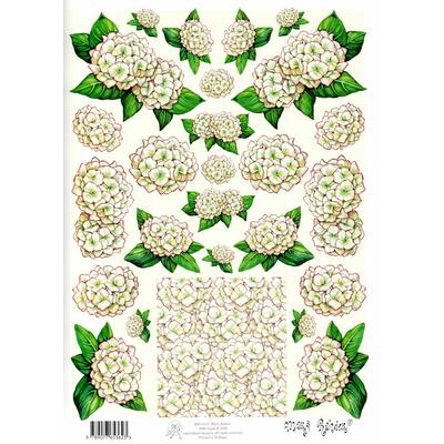 planche d'images pour cartes 3D - A4 - Les hortensias