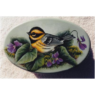 Townsend's Warbler - Karen Hukbbard