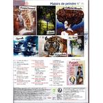 M09425-74-revue-plaisis-de-peindre-fevrier 2019 b