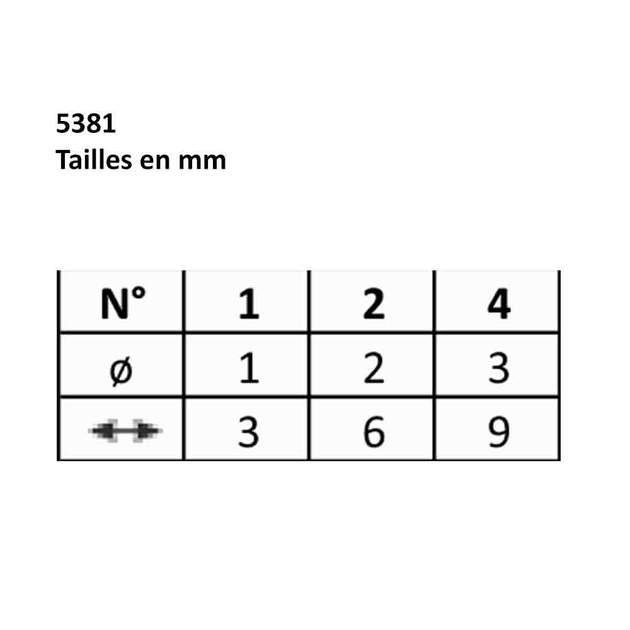 5381Rdrp