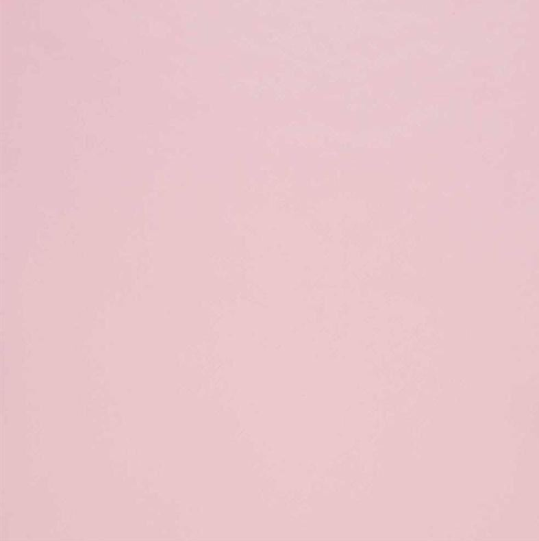 papier peint rose pale resine de protection pour peinture. Black Bedroom Furniture Sets. Home Design Ideas