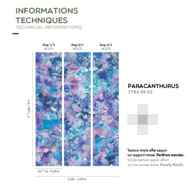 casamance-paracanthurus-visuel.2