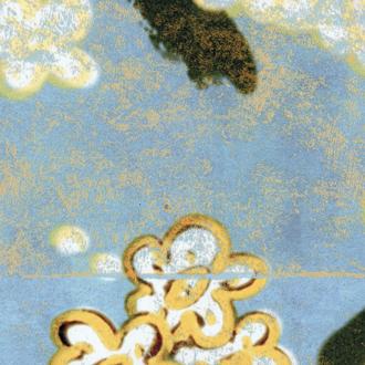 TP_289_01-cerisier-sauvage-panoramique-elitis-bleu