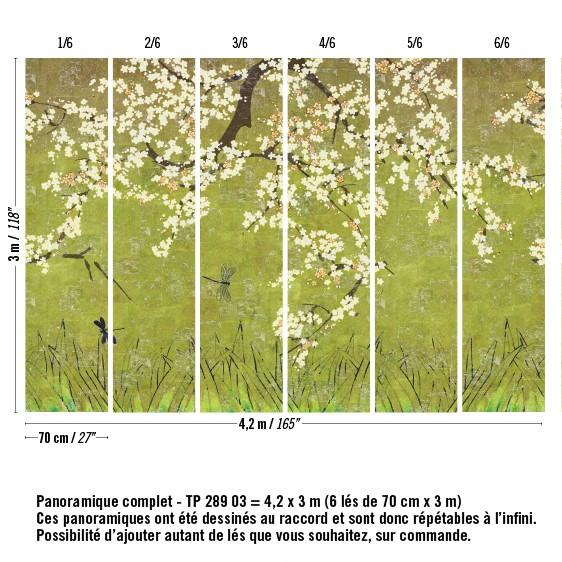 TP-289-03_soleil-levant-cerisier-sauvage-vert