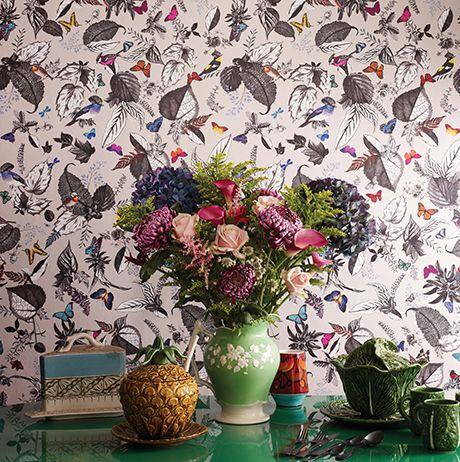 bird_song_osborne-and-little