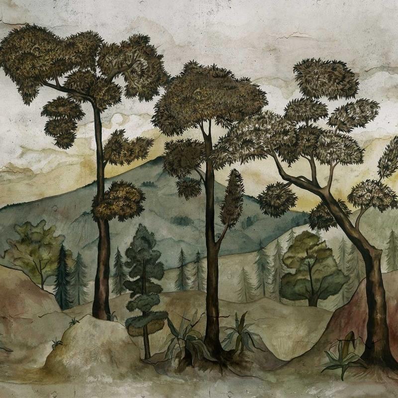 taklamakan-panoramique-paysage-arbre-2