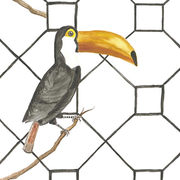 papier-peint-enfant-oiseaux-toucan