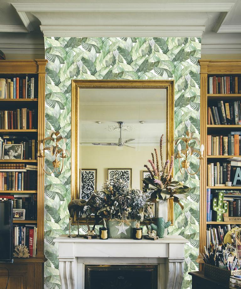 https://media.cdnws.com/_i/28812/8419/2511/23/papier-peint-fuilles-jungle-banano-vert-decoration-jungle.jpeg