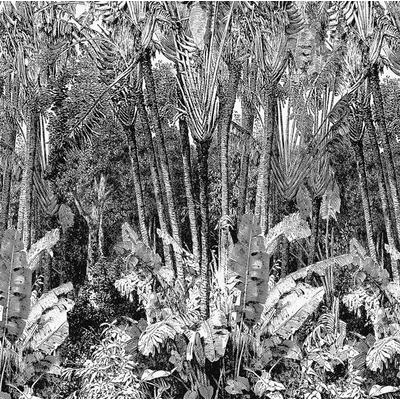 Papier peint panoramique Arbre du Voyageur