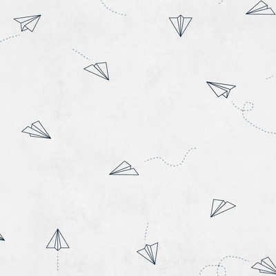 Papier peint avions Lindbergh