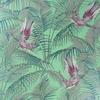 papier-peint-eden-sunbird-matthew-williamson-W6543-03-detail