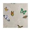 papier-peint-osborne-little-farfalla-ncw4010 (3)