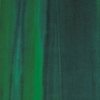METAPHORES_LAGUNE_004 jungle (Copier)