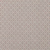 7693-05-bayonne-rhubarb_00