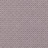 7693-08-bayonne-thistle_00
