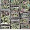 Artyshow-papier-peint-legumes-artichaud